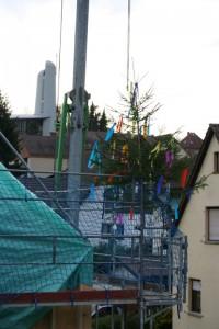 25.10.2013 Der Baum steht, das Richtfest kann beginnen